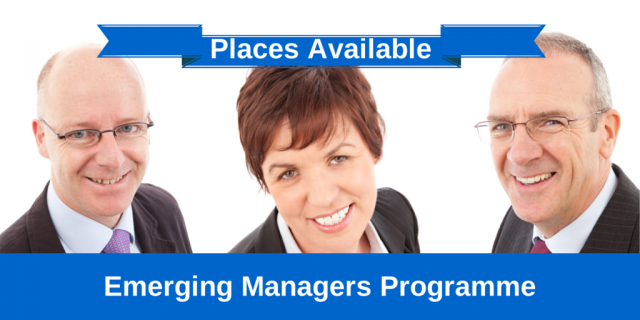 Emerging Managers Programme